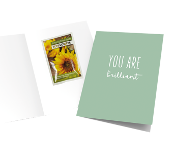 Wenskaart – you are brilliant – sunflower seeds